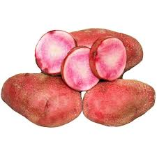 Click to enlarge Red Thumb Fingerling Potato