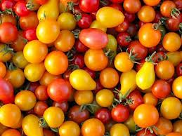 Click to enlarge Heirloom Cherry Tomato Blend