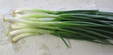 Click to enlarge Green Bunching Onions