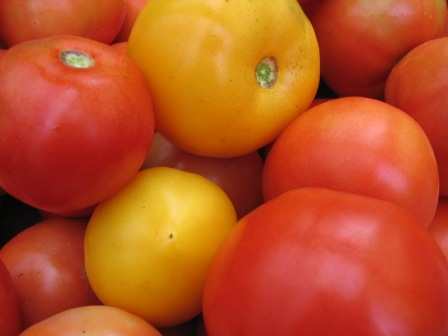 Click to enlarge fresh tomatoes
