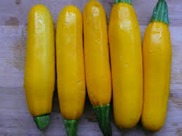 Click to enlarge Certified Organic Yellow Zucchini