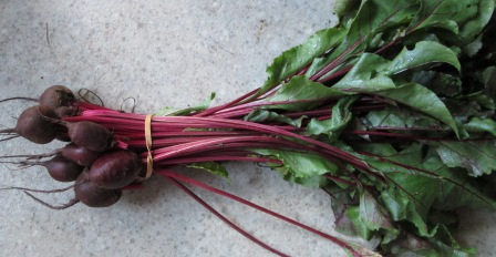 Click to enlarge Red Beets Bunch with Tops