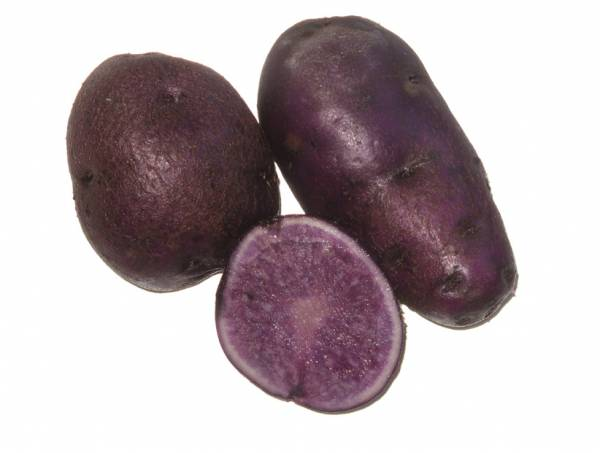 Click to enlarge Purple Potatoes