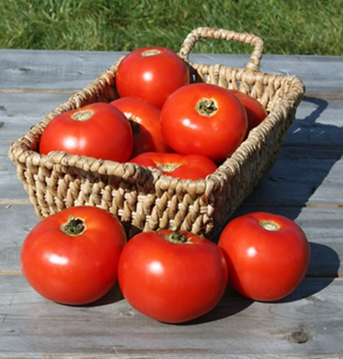 Click to enlarge Certified Naturally Grown Red Tomatoes