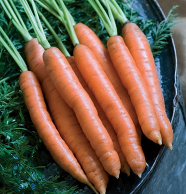 Click to enlarge Carrots: Orange
