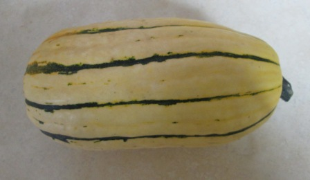 Click to enlarge Delicata Squash