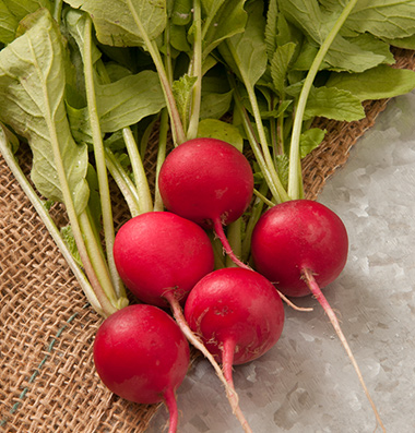 Click to enlarge Certified Naturally Grown Radishes