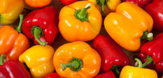 Click to enlarge Certified Naturally Grown Colored Peppers