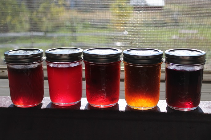 Click to enlarge Apricot Jam