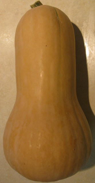 Click to enlarge Butternut Squash