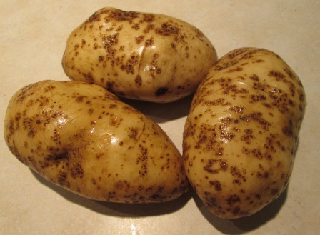 Click to enlarge Potatoes - Kennebec