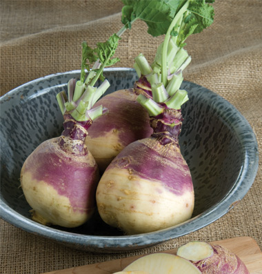 Click to enlarge Certified Naturally Grown Rutabaga