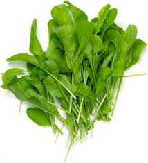 Click to enlarge Certified Organic Arugula