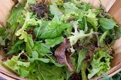 Click to enlarge Certified Organic Mesclun Salad Mix