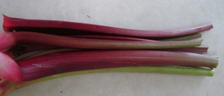 Click to enlarge Rhubarb rhubarb