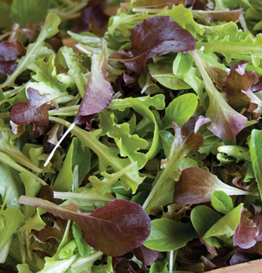 Click to enlarge Certified Naturally Grown Gourmet Lettuce Mix