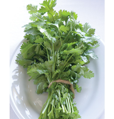 Click to enlarge Certified Naturally Grown Cilantro