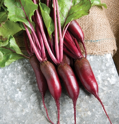 Click to enlarge Certified Naturally Grown Cylindra Beets