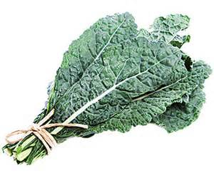 Click to enlarge Certified Organic Lacinato Kale