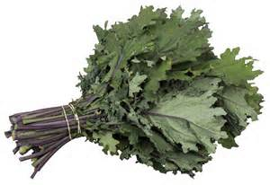 Click to enlarge Certified Organuc Red Russian Kale