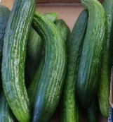Click to enlarge cucumbers