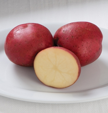 "Click to enlarge Certified Naturally Grown New ""Dark Red Norland"" Potatoes"