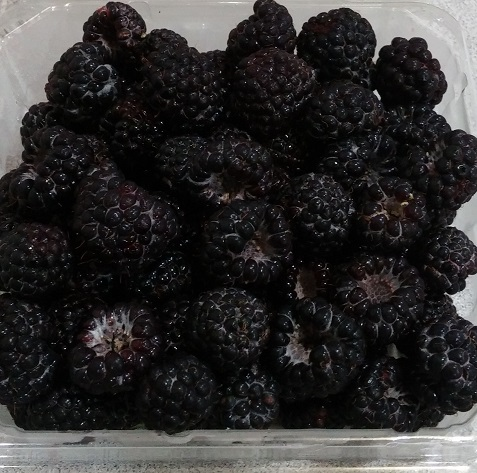 Click to enlarge Black Raspberries