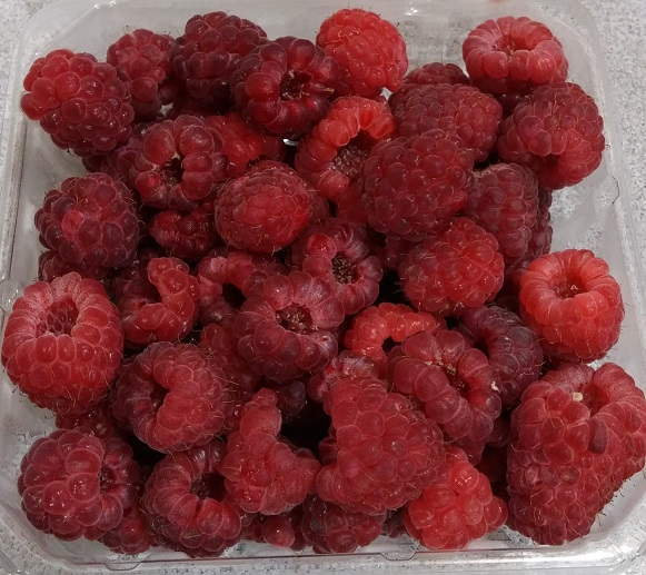 Click to enlarge Red Raspberries