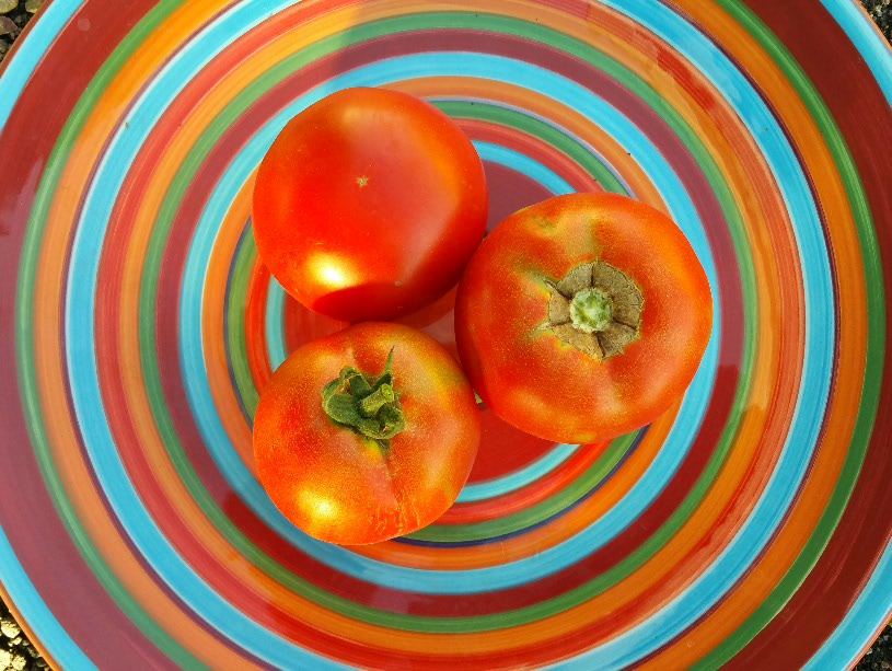 Click to enlarge Tomatoes