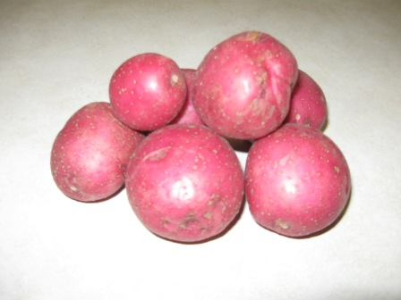 Click to enlarge Red New Potatoes