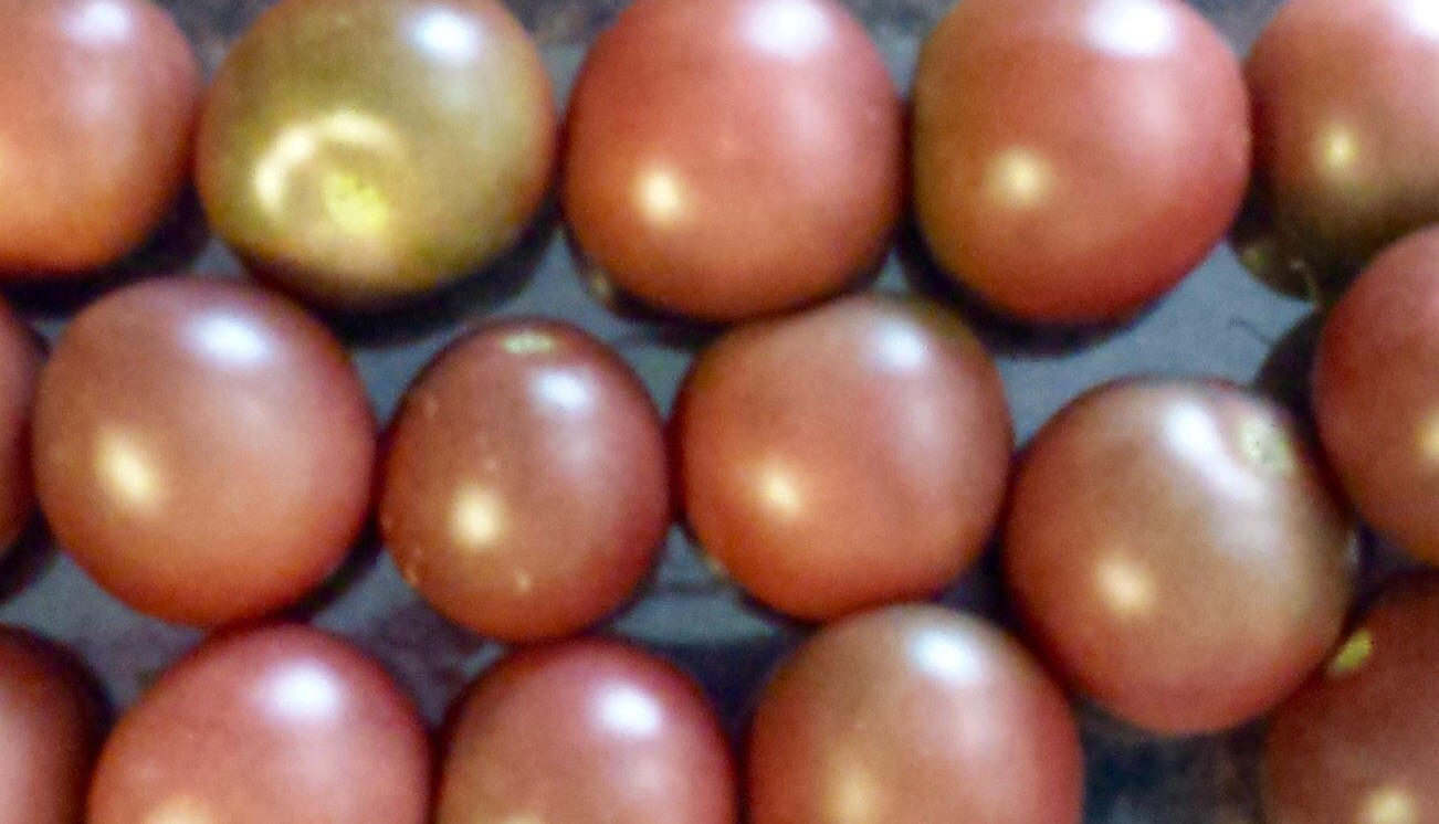 Click to enlarge Black Cherry Salad Tomatoes