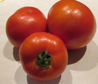 Click to enlarge Tomatoes Red
