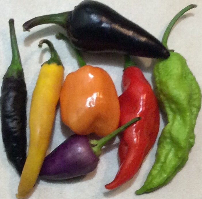 Click to enlarge Hot pepper mix