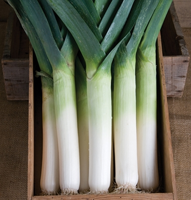 Click to enlarge Certified Naturally Grown Leeks