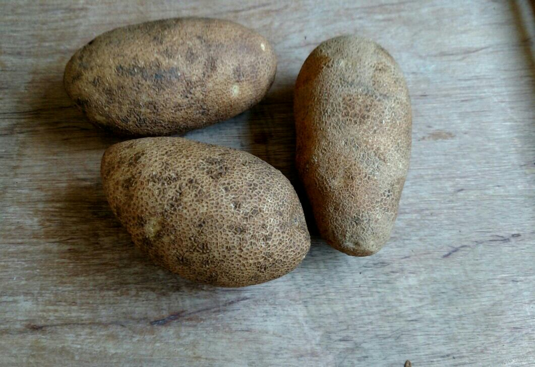 Click to enlarge Russet potatoes