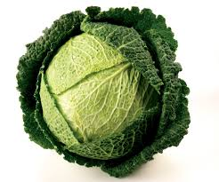 Click to enlarge Transplant- Savoy Cabbage 4 pack