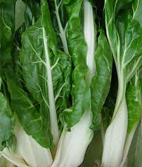 Click to enlarge Transplant- Swiss Chard (White) 3 pack