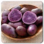 Click to enlarge Certified Naturally Grown All Blue potatoes.