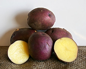 "Click to enlarge Certified Naturally Grown ""Peter Wilcox"" Potatoes"