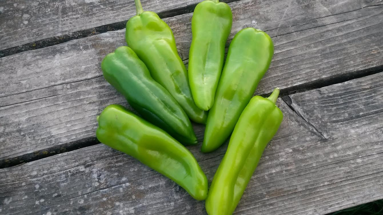 Click to enlarge Anaheim Chile Pepper Pack