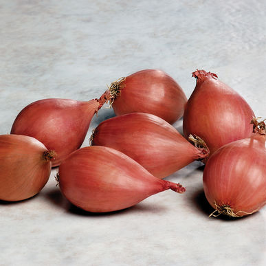 Click to enlarge Onions: Shallots