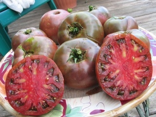Click to enlarge Cherokee Purple Tomato