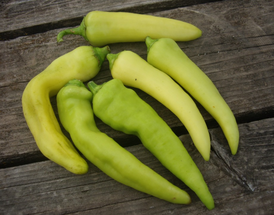 Click to enlarge Sweet Banana Pepper Multi Pack