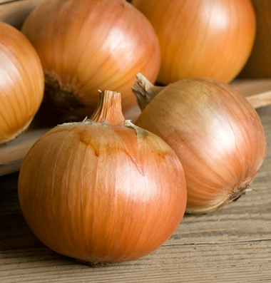 Click to enlarge Certified Naturally Grown Yellow Onions