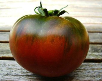 "Click to enlarge Transplant- Paul Robeson Tomato 4"" Pot"