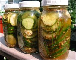 Click to enlarge Pickling Kit