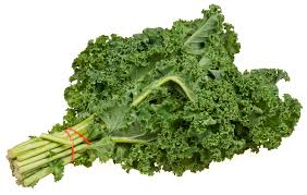 Click to enlarge Kale Bunch (Curly)