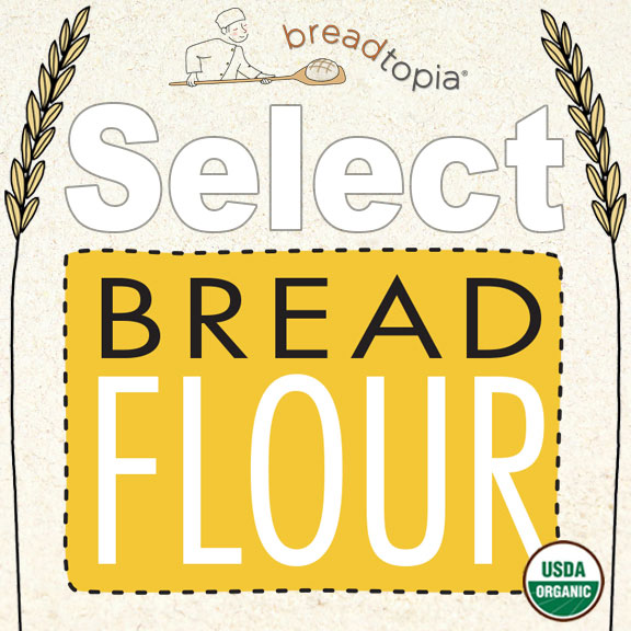 Click to enlarge Breadtopia Select Organic Bread Flour-T85