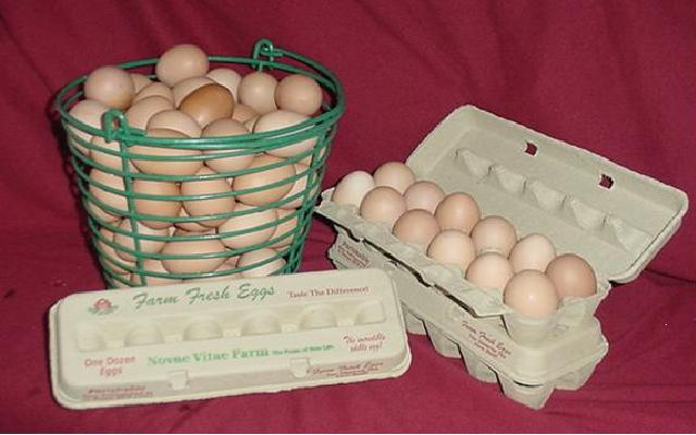 Click to enlarge Free-Range Grade A LARGE-MEDIUM Brown Eggs