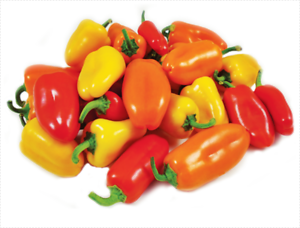 Click to enlarge Lunchbox sweet Pepper